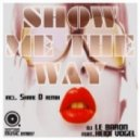 DJ Le Baron feat. Heidi Vogel - Show Me The Way (Shane D Remix)