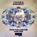 Callide & Intraspekt - Path You Choose (Original Mix)