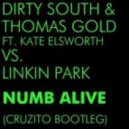 Dirty South & Thomas Gold vs.Linkin Park - Numb Alive (Cruzito Bootleg)