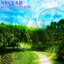 Nistad - Abandoned Places (Original Mix)