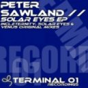 Peter Sawland - Eternity (Original Mix)
