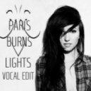 Lights - Everybody Breaks A Glass (Paris Burns Remix)