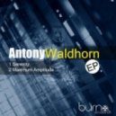 Antony Waldhorn - Maximum Amplitude (Original Mix)