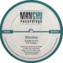 Wookie - Down On Me