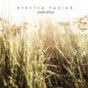 Electro Fusion - World Of Love (Euphoria Forever Mix)