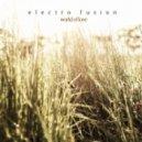 Electro Fusion - World Of Love (Original Mix)