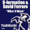 D-Formation, David Ferrero - What U Want - Original Vision