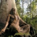 hamel - inhabitants wood communicate
