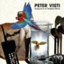 Peter Visti - My Advice