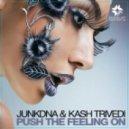 JunkDNA & Kash Trivedi - Push The Feeling On (Original Club Mix)