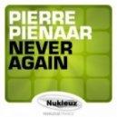 Pierre Pienaar - Never Again (Original Mix)