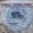 dnewb - fool Soulful
