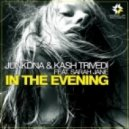 JunkDNA & Kash Trivedi feat. Sarah Jane - In The Evning (Original Club Mix)