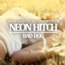 Neon Hitch - Bad Dog (Simon Dawn & Hockenheim Remix)