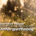 Imperfect Hope - Unforgettable (Original Mix)