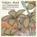 Yotam Avni feat Charles Dockins - That's What The World Needs (Original Mix )
