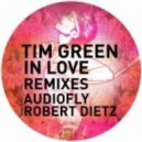 Tim Green - In Love (Audiofly Now You Can Work Remix)
