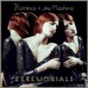 Florence & The Machine - Seven Devils (Original Mix)