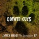 James Shoji - Hold Up (Original Mix)