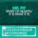 Mr. Pit - It is What it Is