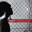 Heavy1  - The Light Upon My Road (feat. Iriann Joyce)