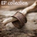 The Quest - C-Sharp (Cymatics Emotional Take)