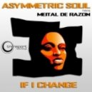 Asymmetric Soul feat Meital De Razon - If I Change (Devid Morrison Remix)