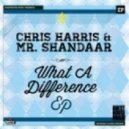 Chris Harris & Mr. Shandaar - Right On (Original Mix)