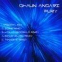 Shaun Ansari - Fury (TrancEye Remix)