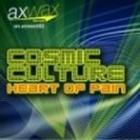 Cosmic Culture - Heart of Pain (Original Extended Mix)