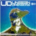 Unseen Dimensions - Gold Star (Natural Vibes Rmx)