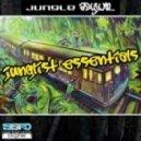 Jungle Asylum - Black Ops (Original Mix)