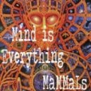 MaMMaLs - Mind is Everything ()