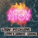 Litov - Pitch Love (VIP)