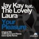 Jay Kay, The Lovely Laura, Treitl Hammond - Your Pleasure (Treitl Hammond Remix)
