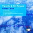 Valentin & AKI Amano - Perfect Blue (Shintaro Remix)
