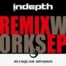 Fiord - Scarab (Indepth Remix)