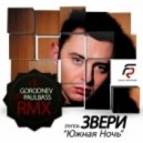 Звери - Южная Ночь (DJ Paulbass & DJ Gorodnev South Night Mix 2012)