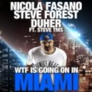 Nicola Fasano, Steve Forest, Duher, Steve Tms - Wtf Is Going On In Miami (Christian Sims Mix)
