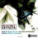 Dio S & Zisis D - Cattleya (Tash Stage Van H remix)