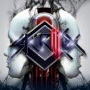 Birdy Nam Nam - Goin´In ,Skrillex (Acid Bass Sound Remix)