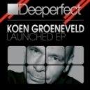 Koen Groeneveld  - Stabilizer (Original Mix)