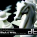 Chris Schweizer - Black & White (Tom Colontonio Remix)