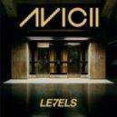 Avicii  - Levels (Misha Hvost Remix)