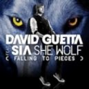 David Guetta feat. Sia - She Wolf (Falling To Pieces) (DJ Sirodj Aka Re-Boot)