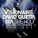 David Guetta ft. Sia - She Wolf (Dirty Dutch Visionaire Remix)