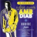 Amr Diab - Habibe (Matthew Roberts Phunk Force 'Flying Tonight' Mix)