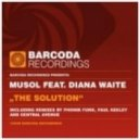 Musical Solution Feat Diana Waite - The Solution (Original Mix)