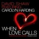 David Shaw & Carolyn Harding - When Love Calls (Deep Soul Mix)