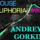 Dj Andrey Gorkin - House Euphoria #009
